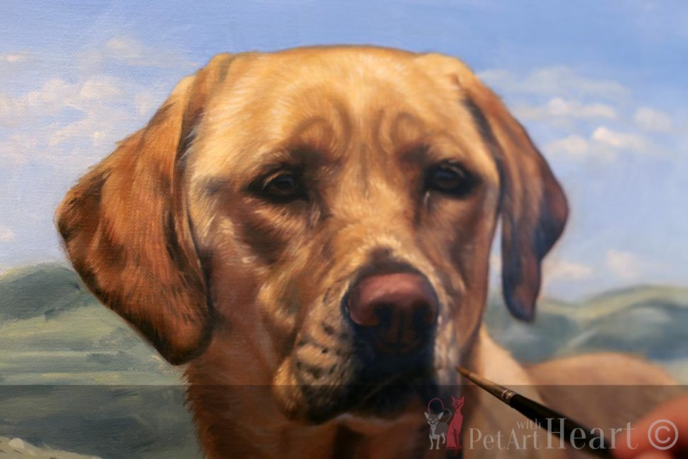 Oil portrait dog progress base stage