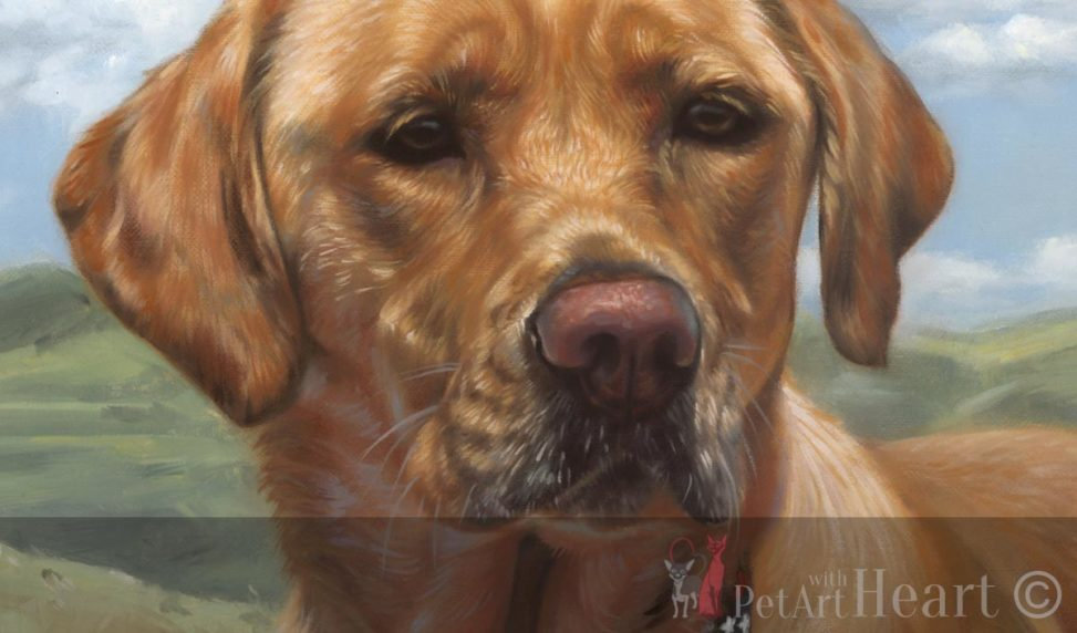 Dog portrait in oil Mazie