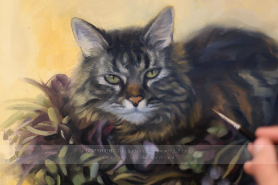 Cat TigerLily in Oil Work in Progress