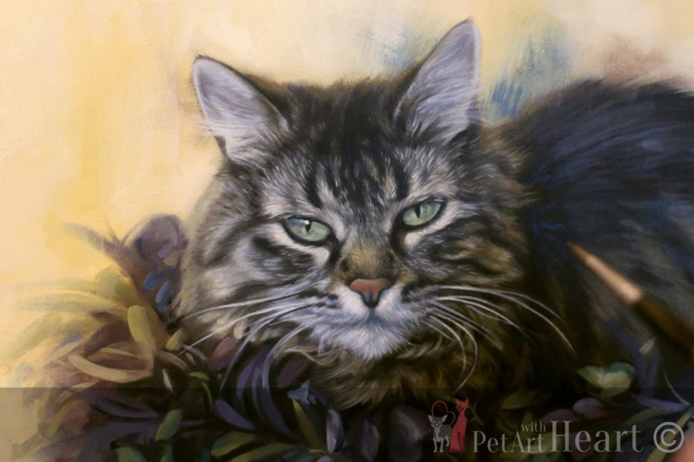 Cat Portrait in Progress TigerLily