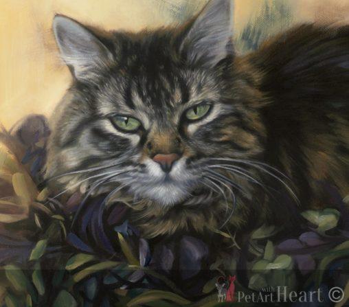 Cat portrait painting oils