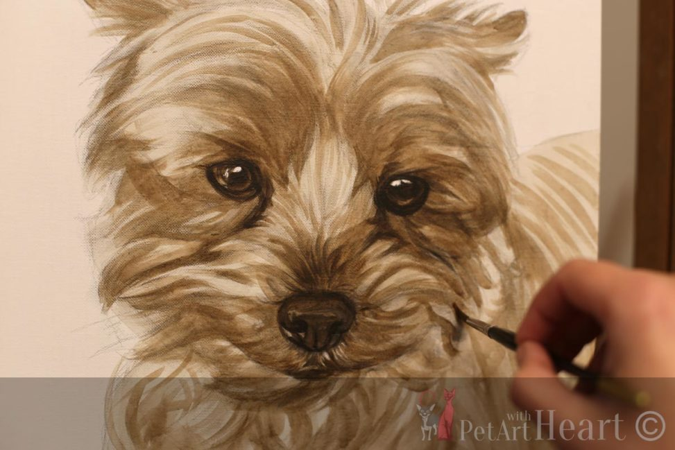Terrier oil portrait progress