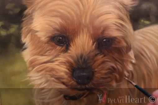 terrier dog portrait oil progress