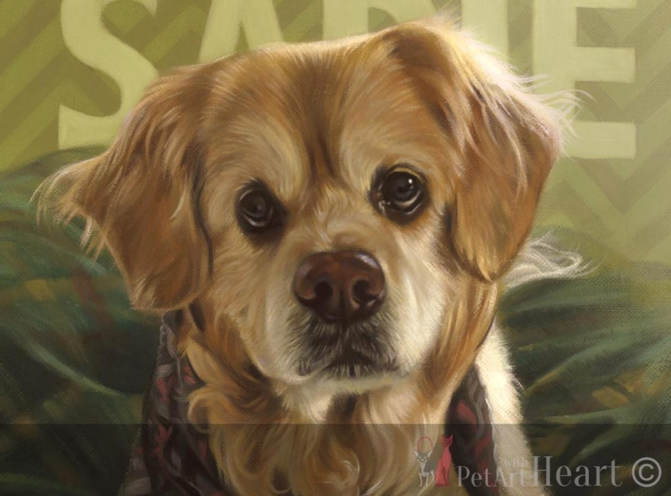 dog portrait in oils sadie