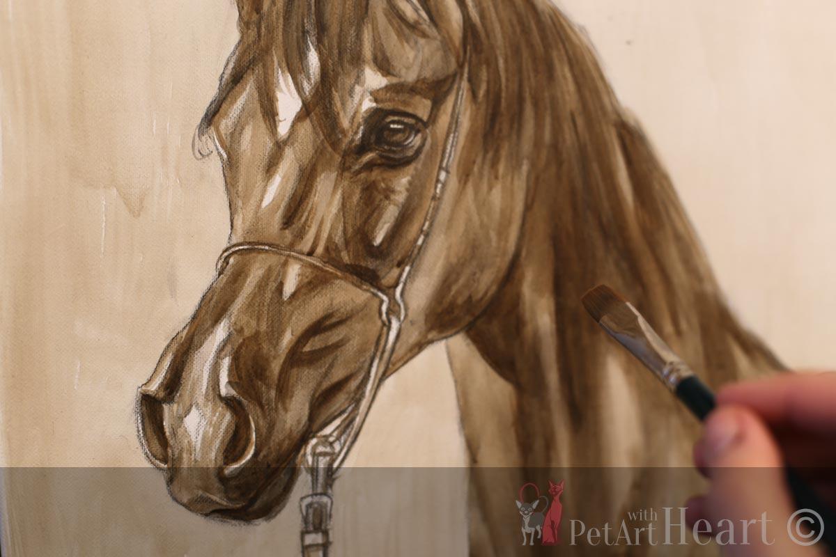 Arabian Horse Portrait In Oil Initial Sketch On The Easel