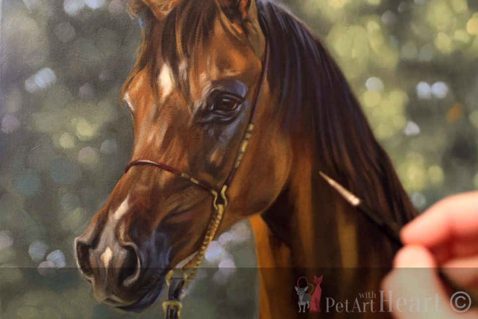 arabic horse oil portrait progress