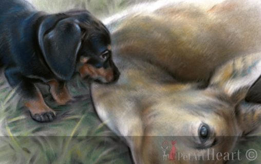 drawing hunting dog deer pastel