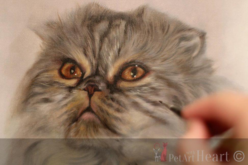 cat oil portrait scottish fold