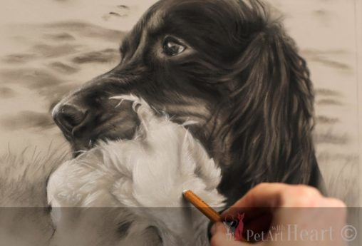 dog portrait pastel gordon setter