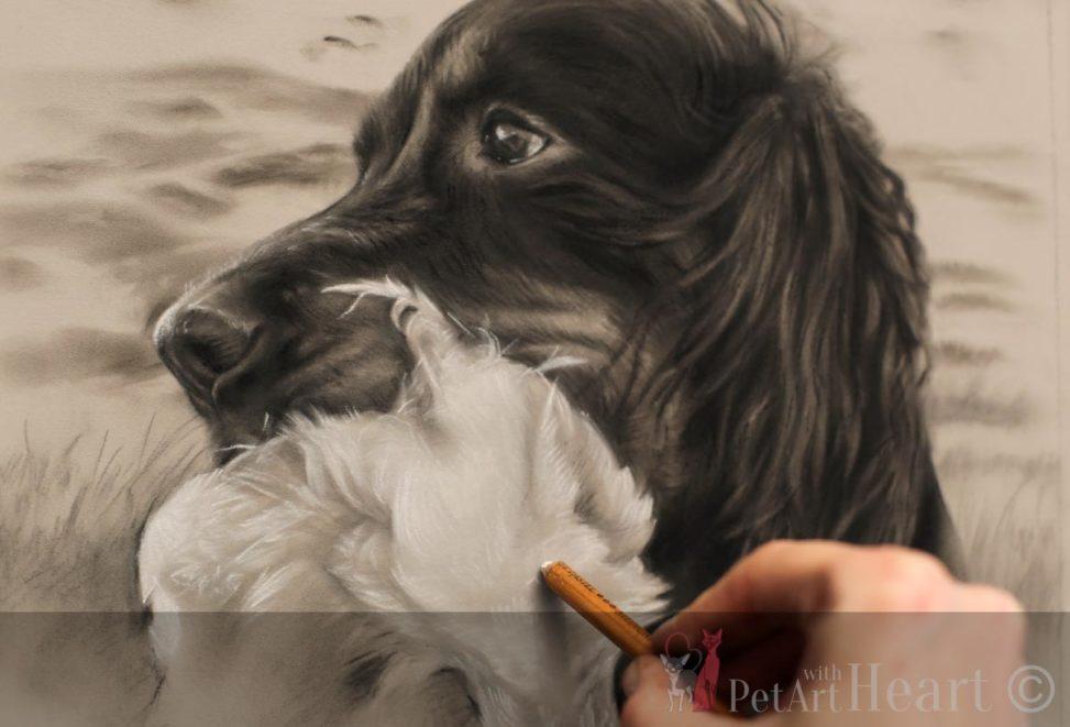 dog portrait pastel gordon setter