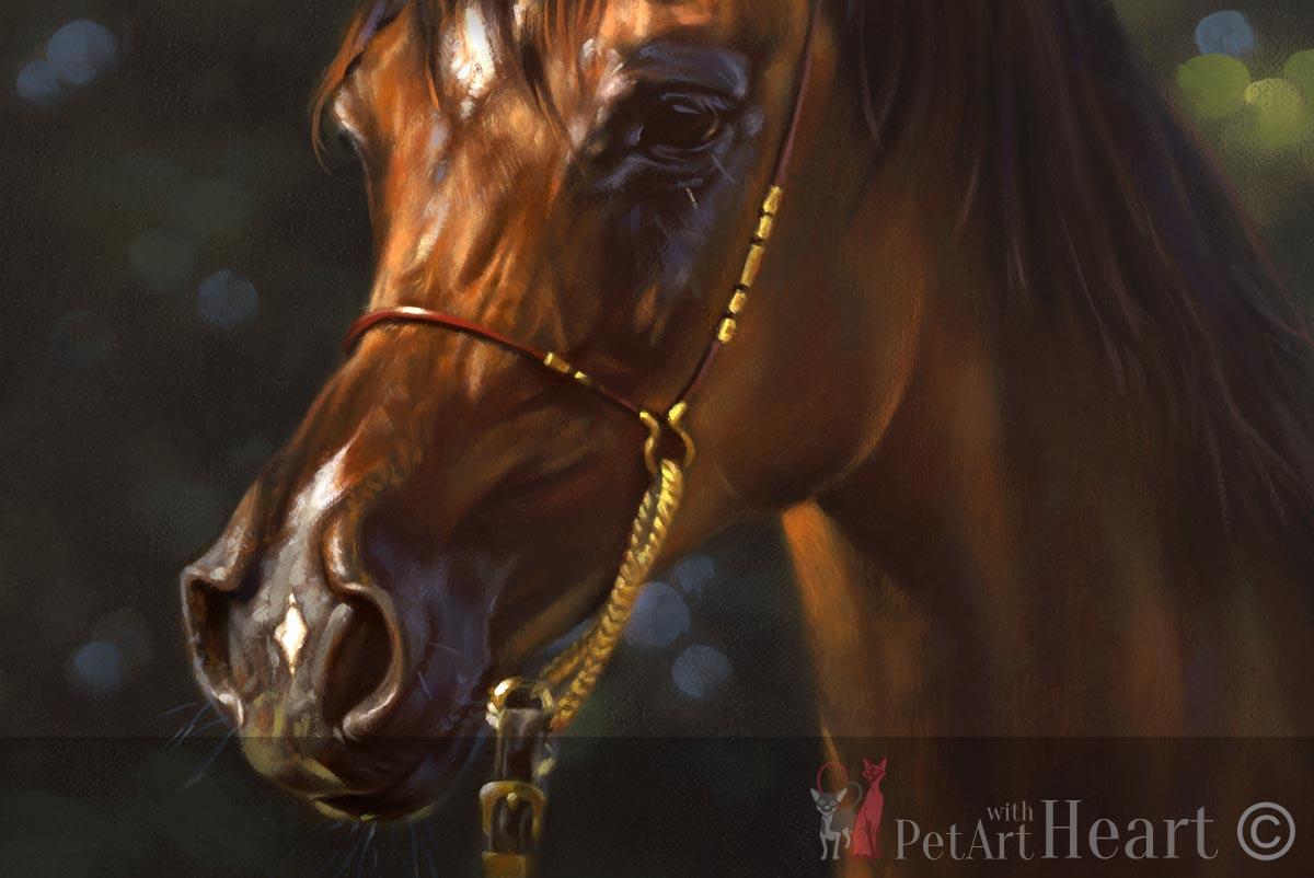 oil portrait arab horse