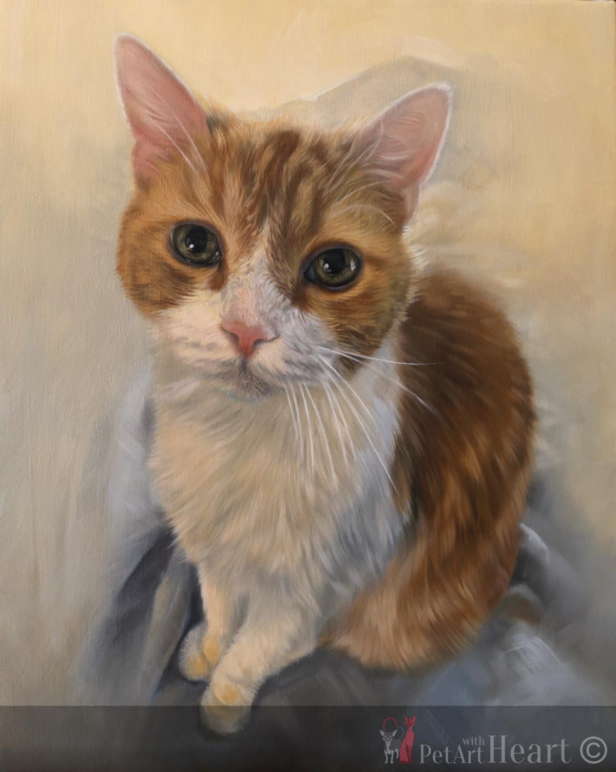 cat oil portrait progress