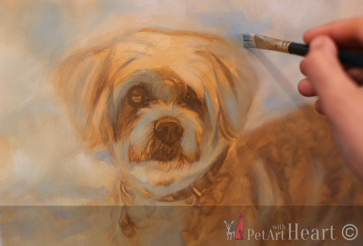 Dog Portrait in Progress Stage 2 Viruta