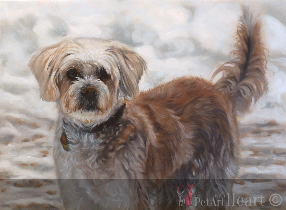 Dog Portrait in Progress Stage 3 Viruta