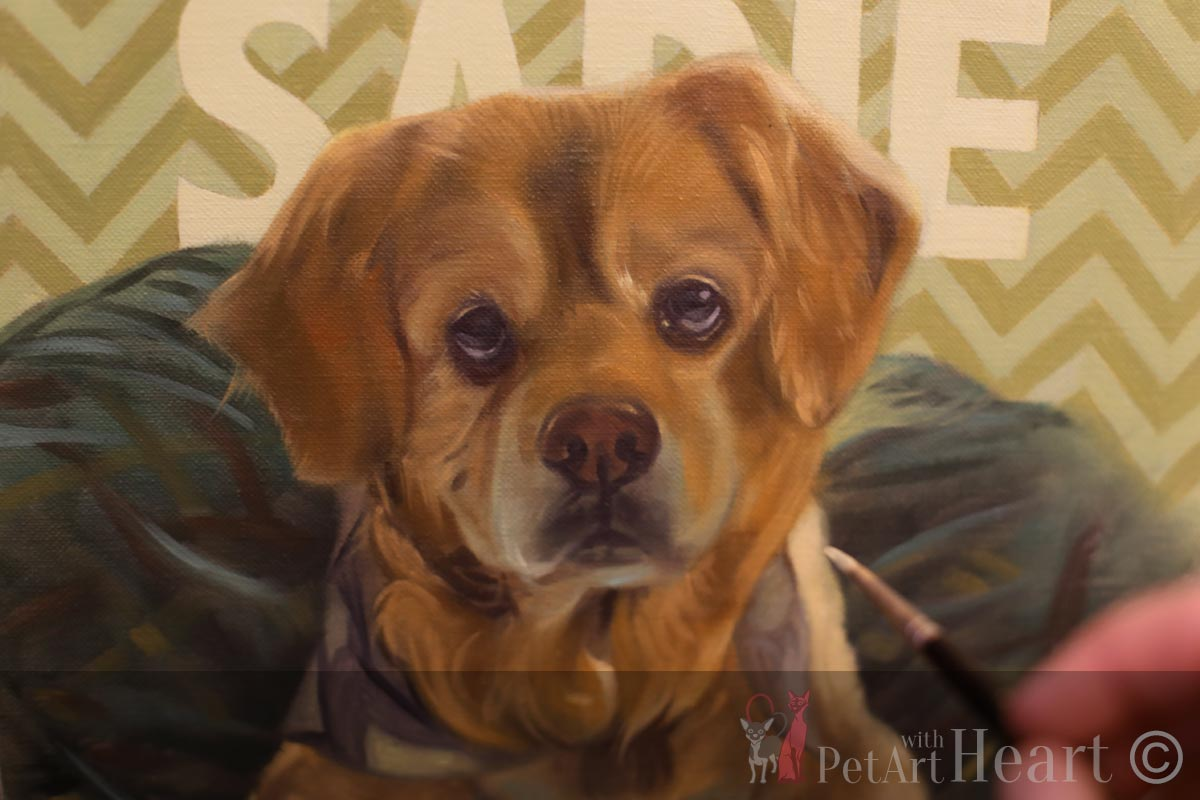 oil portrait dog sadie