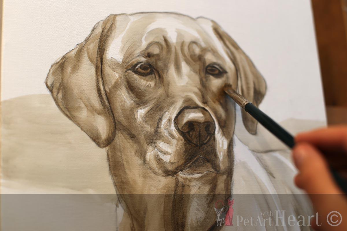 Dog portrait oil progress mazie