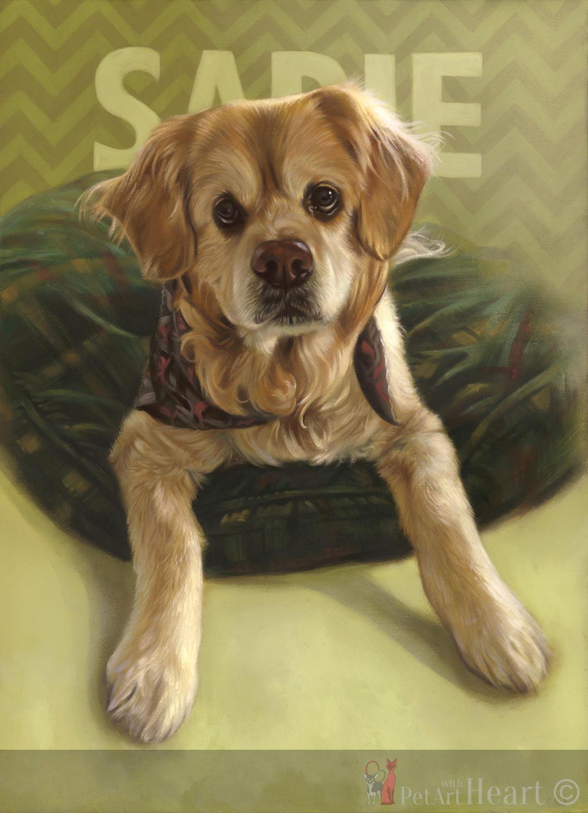 dog portrait oils