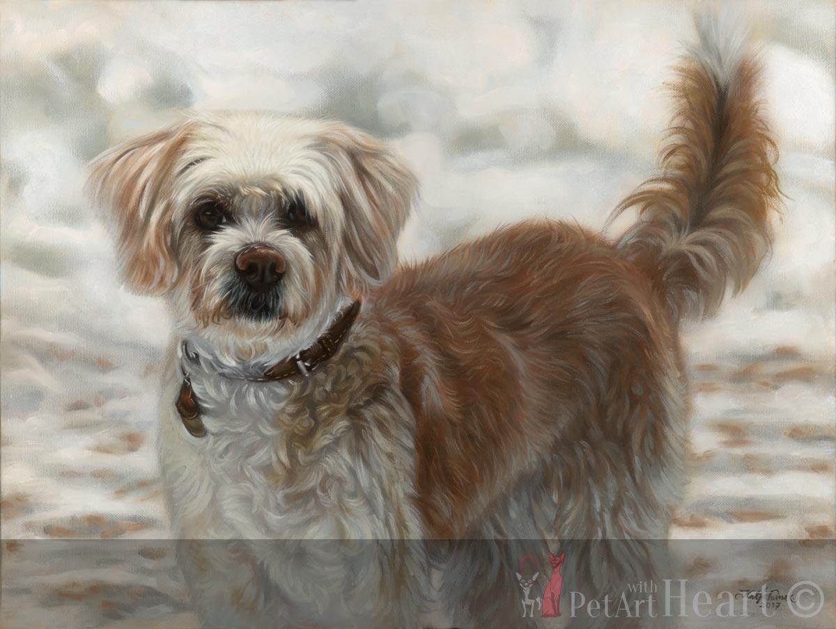 Dog portrait in oils - Final scan Viruta