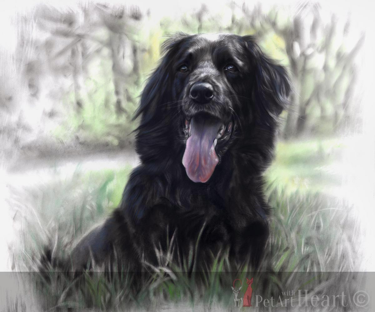 Dog Portrait in pastel Zorba Final scan
