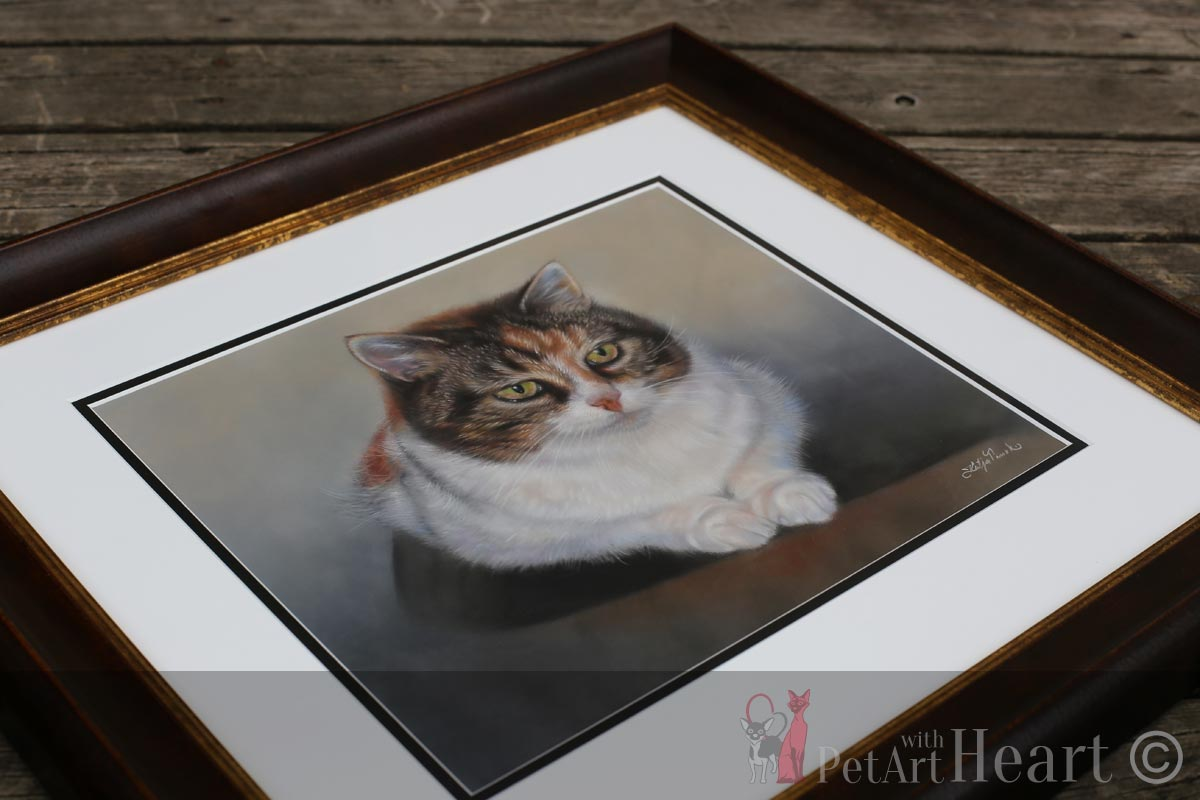 framed cat portrait in pastel
