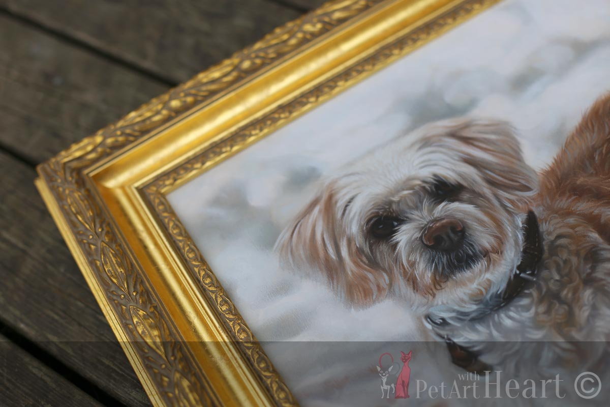Framed dog portrait Viruta with Ornate frame