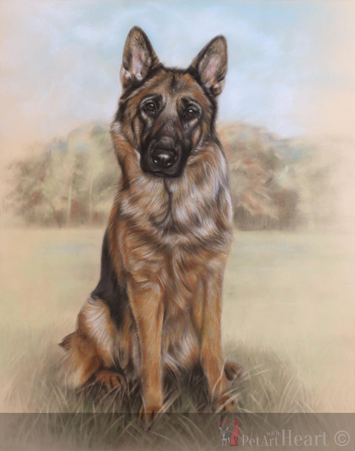 pastel portrait german shepherd progress