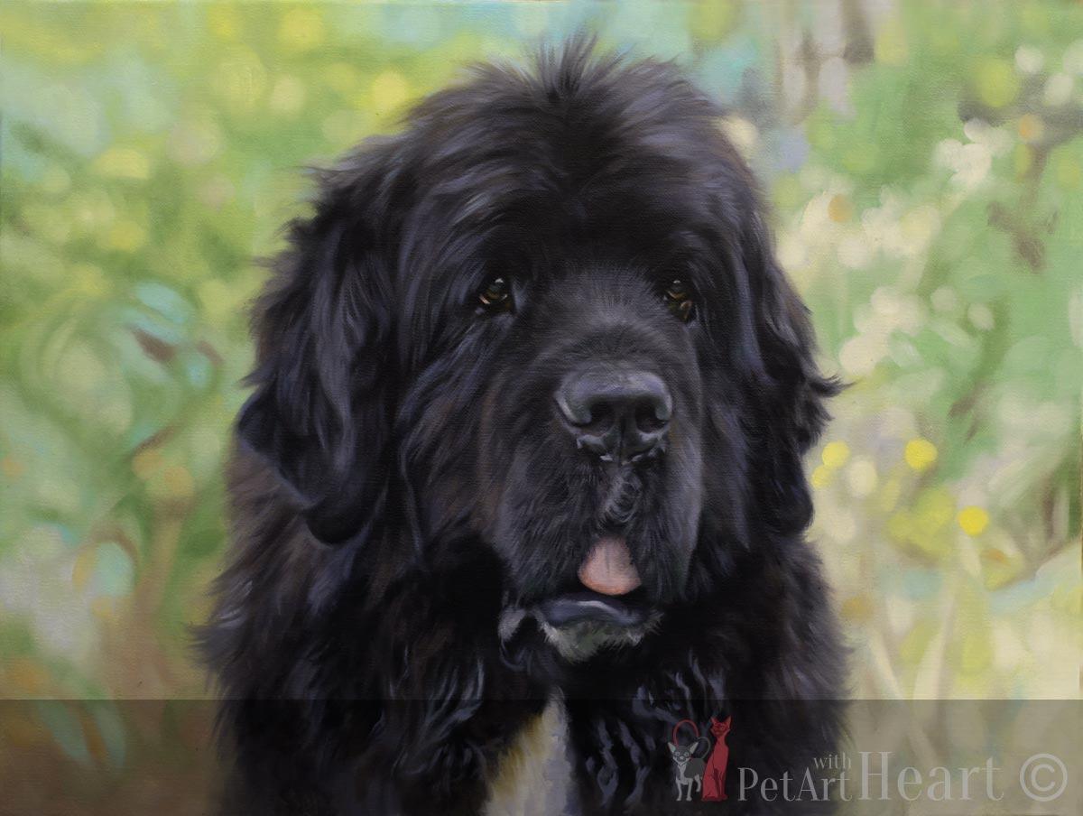 dog oil pet portrait progress dark layer stage