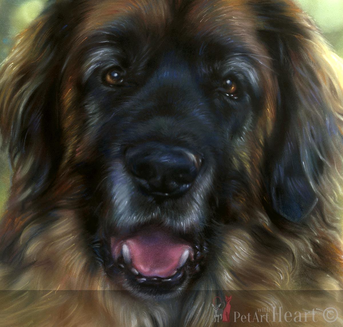 leonberger pastel pet portrait