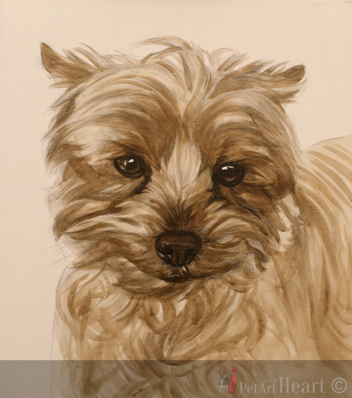 yorkshire terrier oil painting progress