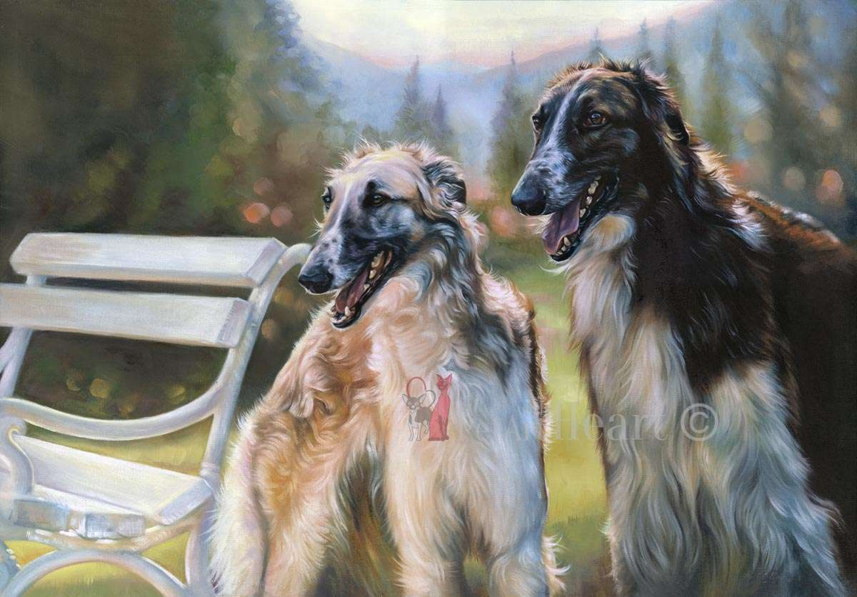 Borzoi in oils