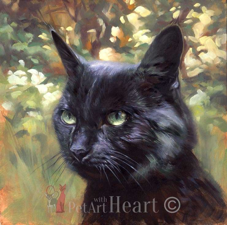 Cat portrait in oils Hoover