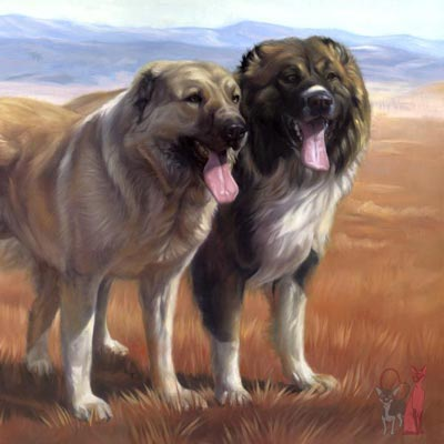 Dog oil painting Dixie, Hachiko