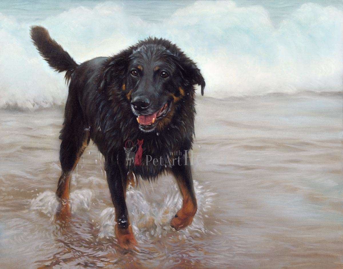 Dog on Beach in oils