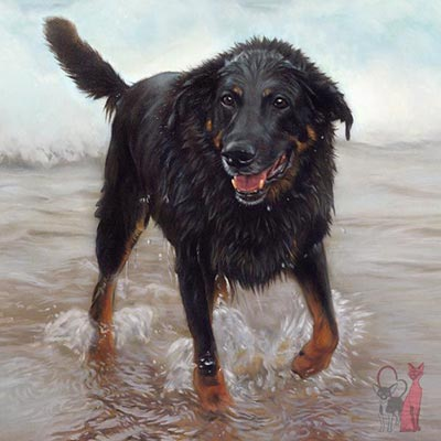 Painting dog on beach Buster