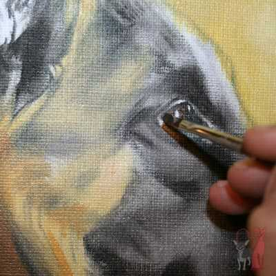 pet portrait progress oil Wolfgang