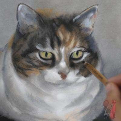 pet portrait progress pastel Mysan