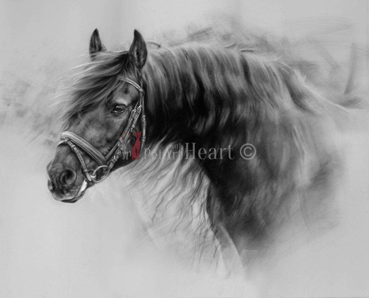 Friesian horse in pastel