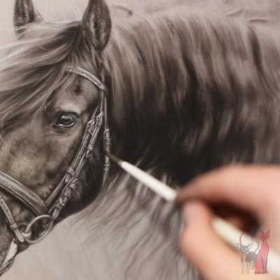 pet portrait progress pastel Friesian