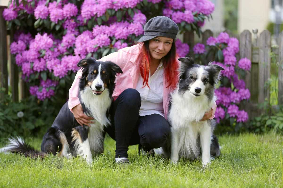 Pet portrait Artist Katja Turnsek with border collies Trolleyes Ace and Chatt Deabei